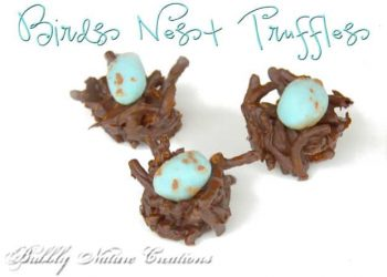 Project Party Weekend: Bird's Nest Truffles… Link up your projects here!