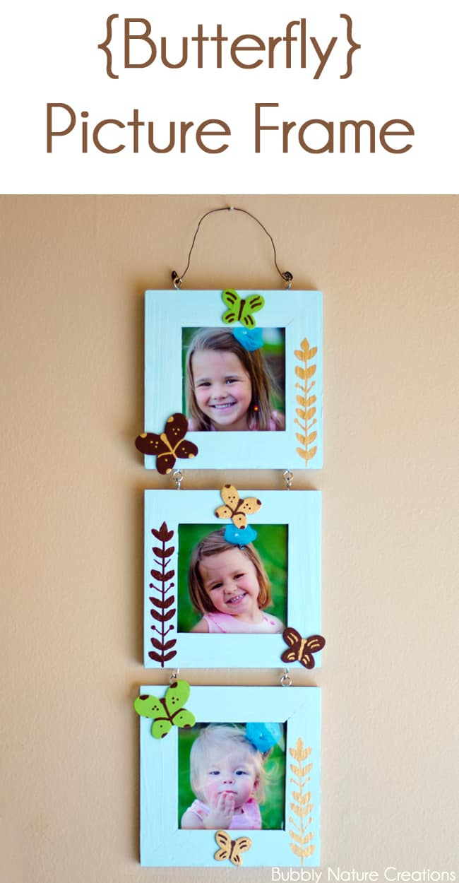 Butterfly Picture Frame!