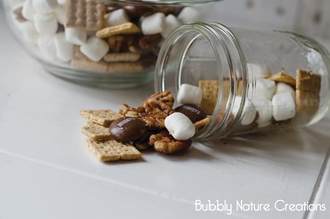 Hershey's S'more Trail Mix!