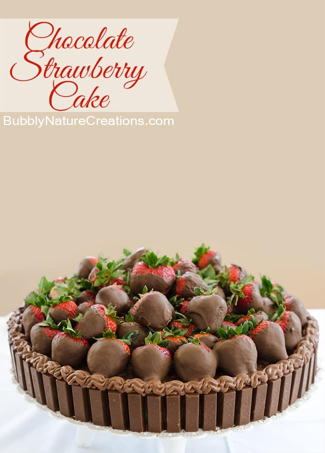 Chocolate Strawberry Cake 2
