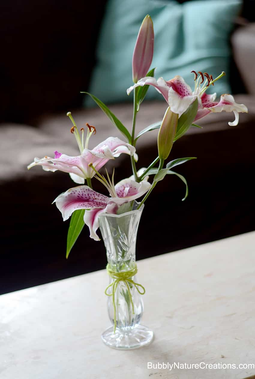 Diy Gift Wrap With Lilies Sprinkle Some Fun