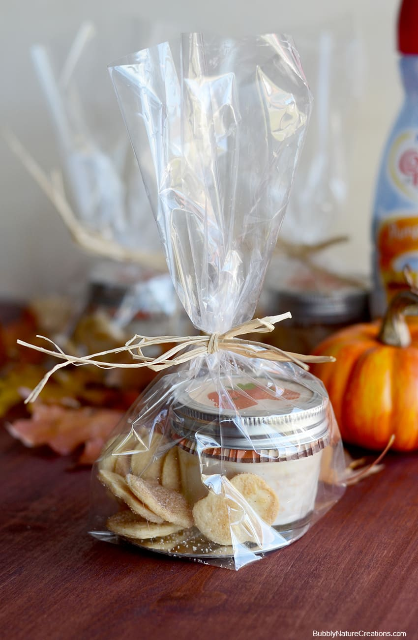 Creamy Pumpkin Spice Dip with Cinnamon Pie Chips! #loveyourcup #shop
