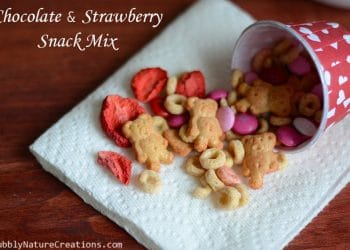 Chocolate and Strawberry Snack Mix! {Valentine}