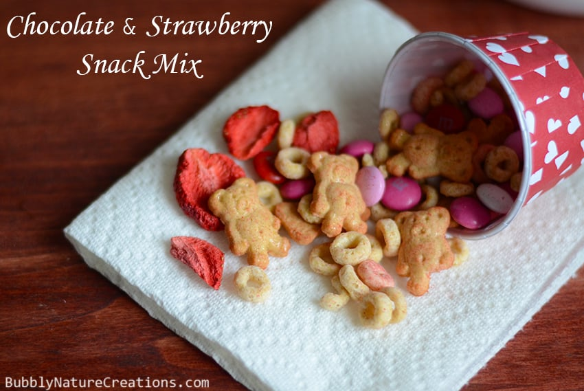 Chocolate and Strawberry Snack Mix 2