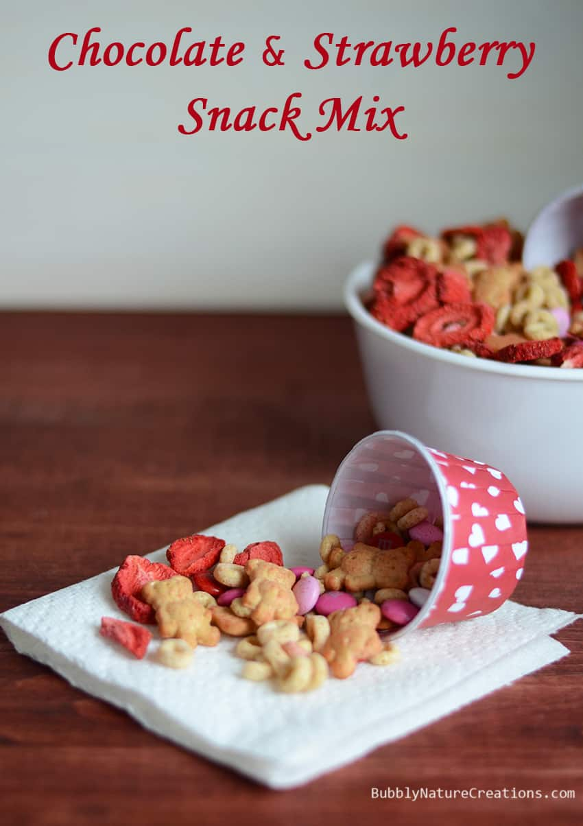 Chocolate and Strawberry Snack Mix