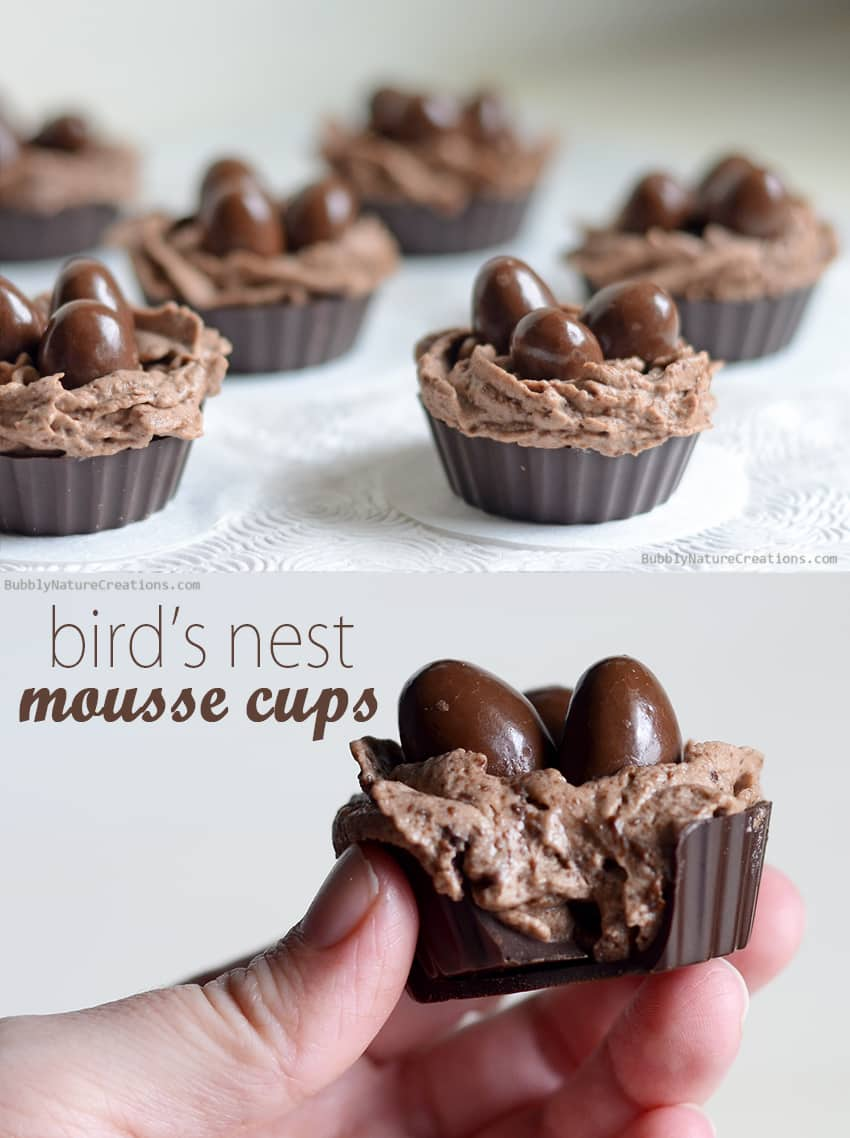 Bird's Nest Mousse Cups! Perfect chocolatey Easter treat! This easy eggless mousse is whipped up in the blender under 5 minutes!!!