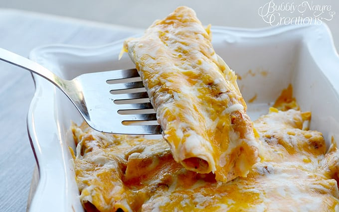 Chicken Bacon Ranch Enchiladas!  A great change from traditional enchiladas!!