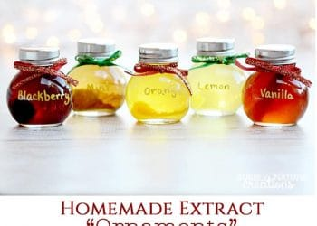 Homemade Extract Ornaments! {Easy Christmas Gift}
