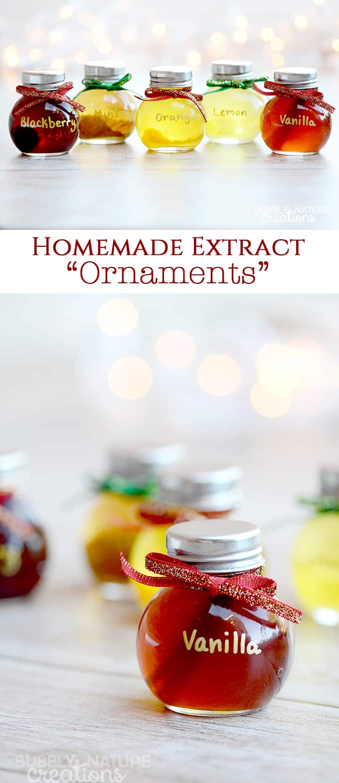 Homemade Extract Ornaments ⋆ Easy DIY Christmas Gift ⋆ Sprinkle ...