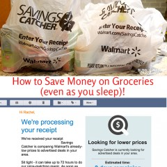 How to Save Money on Groceries (even as you sleep)! So effortless and easy!