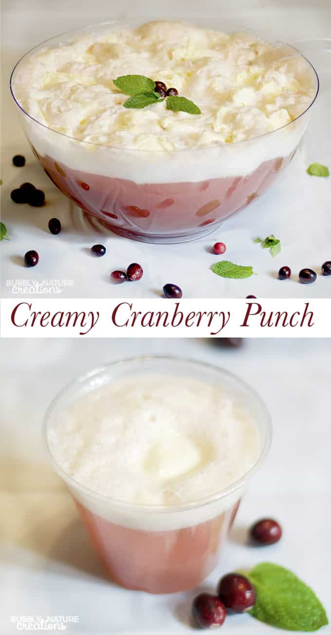 Creamy Cranberry Punch!