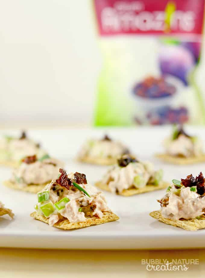 Tuna Salad Snack Bites with Plum Amazins!! A healthy snack idea with protein and fiber!
