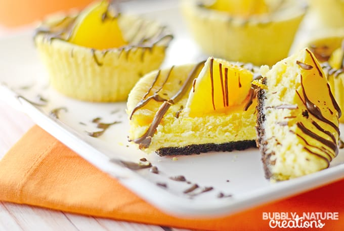 Chocolate Orange Mini Cheesecakes!!