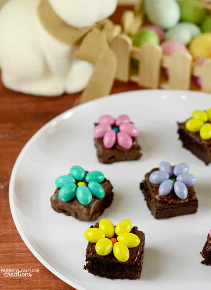 Brownies with Chocolate Candy Flowers