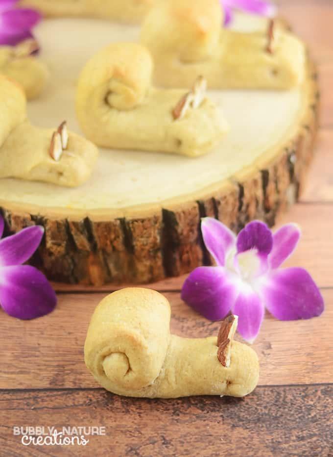 Snail Rolls!! Easy Bread Recipe that is fun for kids!