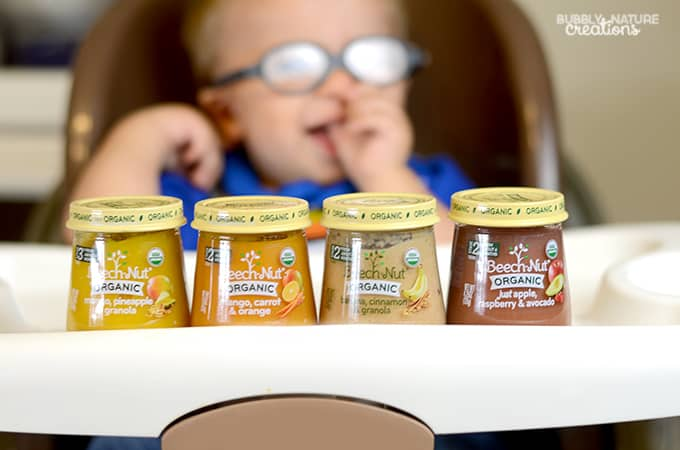 Where to find Beech Nut Organic Baby Food