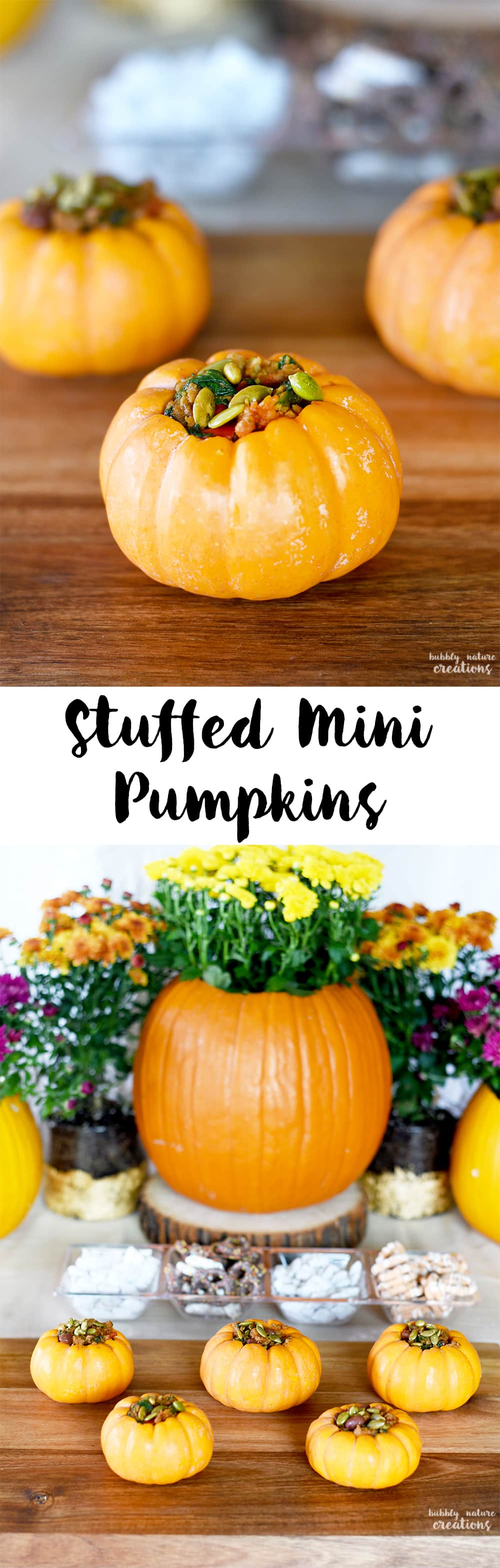 Stuffed Mini Pumpkins! These are such and easy and pretty idea for Thanksgiving or any Fall occasion! Fill them with a savory or sweet filling.
