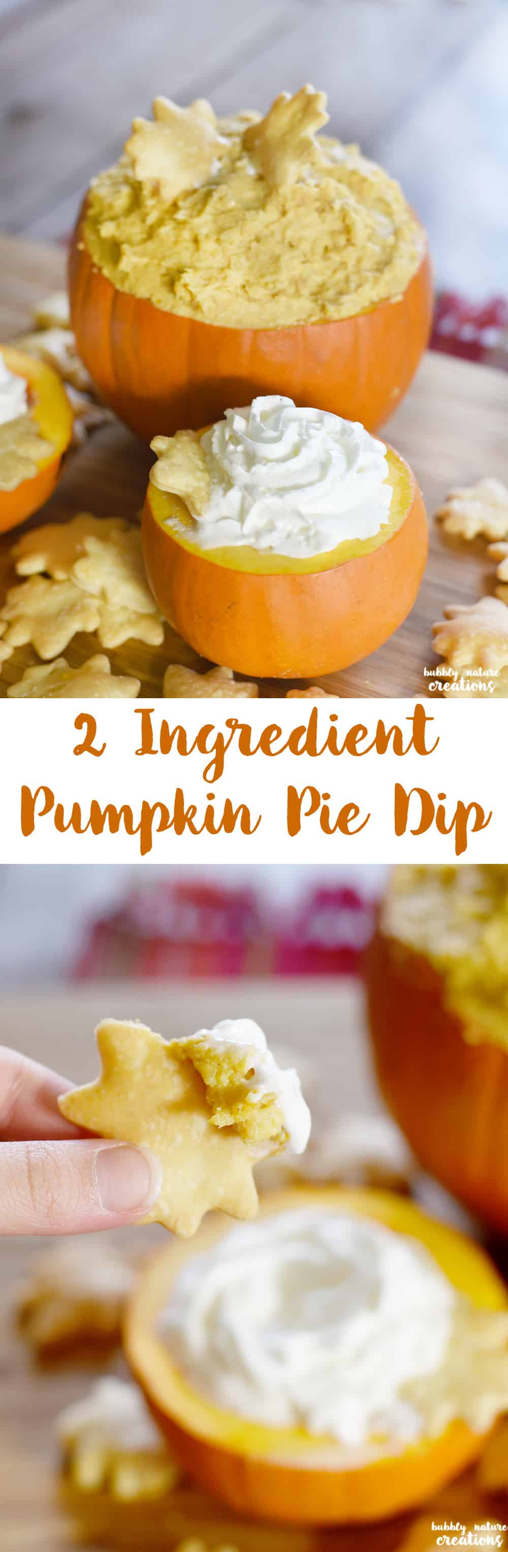 2 Ingredient Pumpkin Pie Dip! So easy and delicious for Thanksgiving or any Fall occasion.