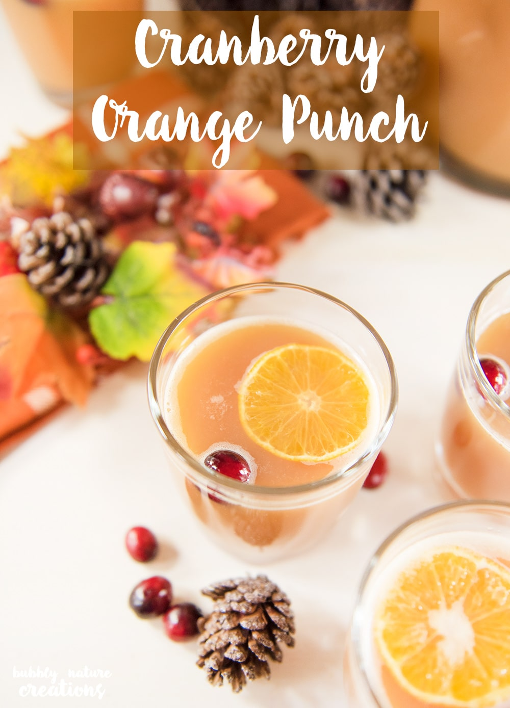 Easy Cranberry Orange Punch