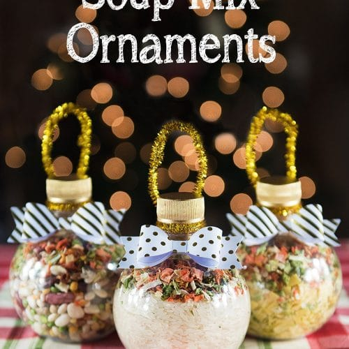 Soup Mix Ornaments • Sprinkle Some Fun