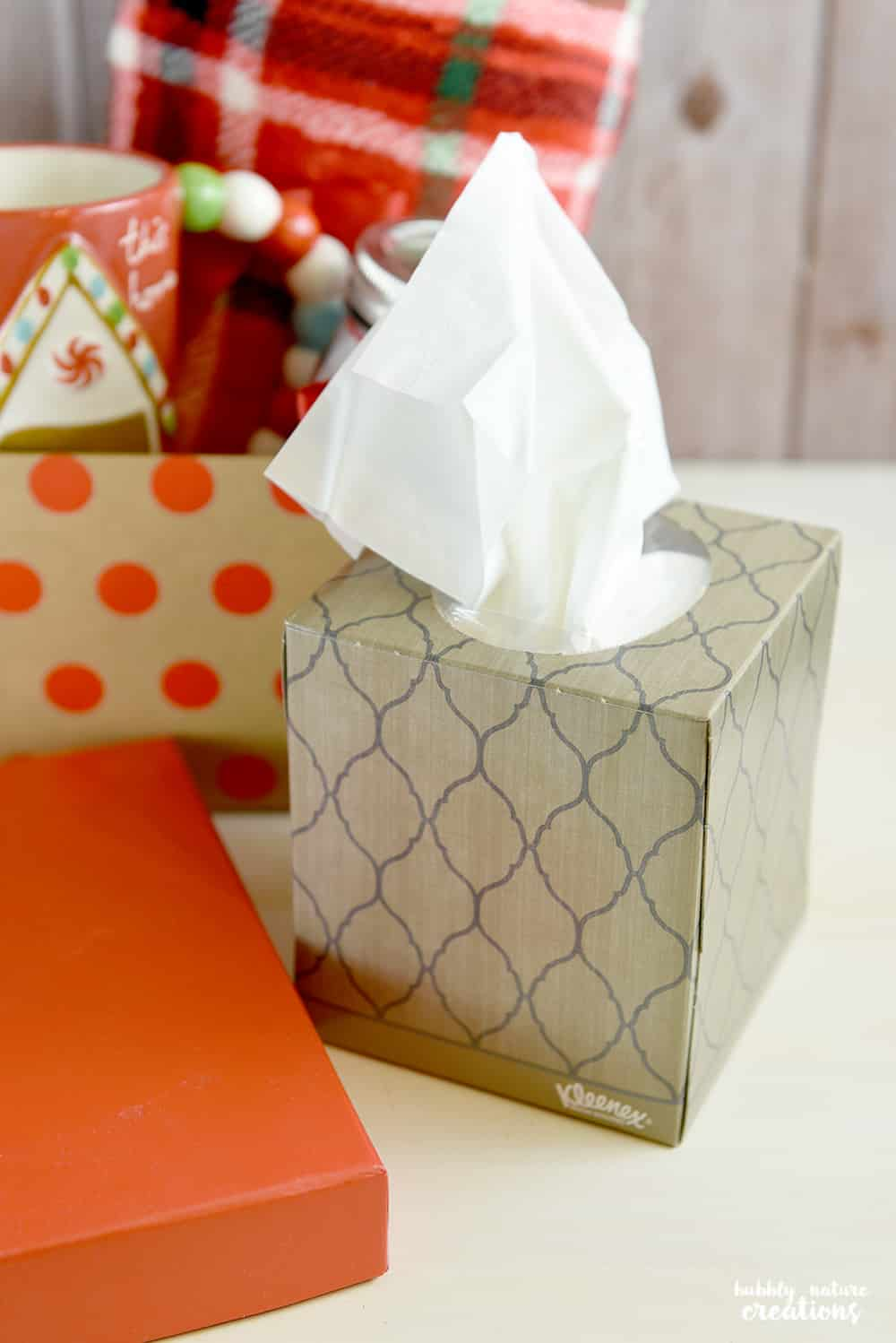 Winter Care Kit Gift! Know someone battling the cold or flu this season? Make them this easy kit!