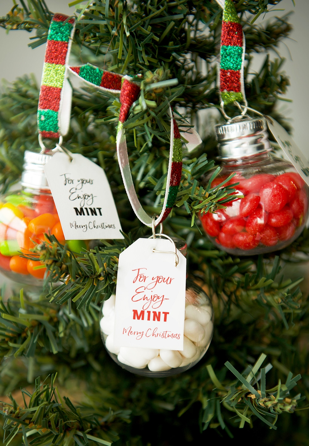 These Mint Filled Ornaments are a simple holiday gift idea you can give to everyone!